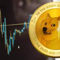 Dogecoin Bay Bilen Kripto Haber