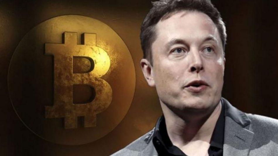 Elon Btc Bay Bilen Kripto Haber