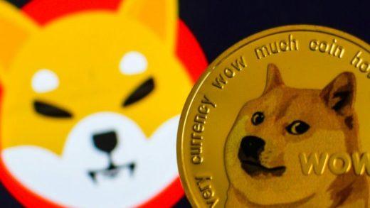 Shib Doge 1 Bay Bilen Kripto Haber