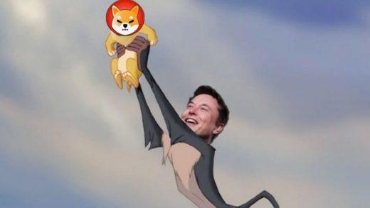 Elon Musk Shiba Inu Bay Bilen Kripto Haber